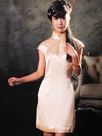 Mandarin Collar Honeybee & Single-Line Bottons Cap Sleeve Knee Length Silk Satin Champagne Cheongsam
